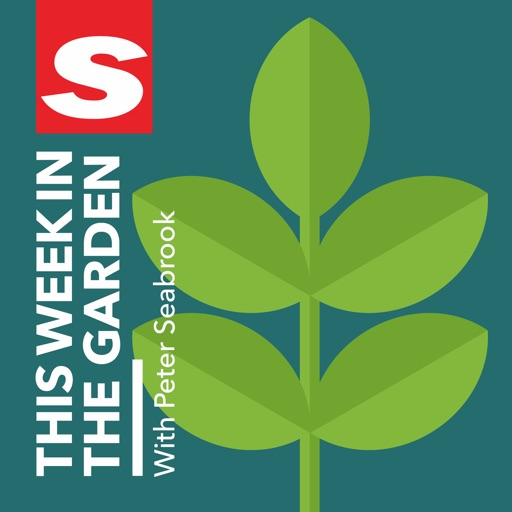 Cover image of This Week In The Garden with Peter Seabrook