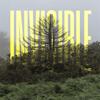Ólafur Arnalds - The Invisible EP обложка