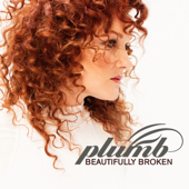 Beautifully Broken-Plumb