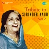 Tribute to Surinder Kaur Vol 2 Single