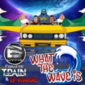 B. Dvine - What The Wave Is
