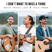 I Don't Want to Miss a Thing (feat. Felix Irwan) - Music Travel Love
