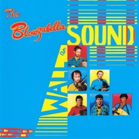 Wall of Sound by Blowzabella on Apple Music