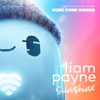 Sunshine From the Motion Picture Ron s Gone Wrong - Liam Payne mp3