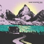 Desert Mountain Tribe - Chemical Genius (feat. Najma Akhtar)