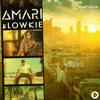 AMARI & Lowkie - Survive artwork