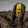 Roots - Jay Smith