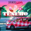 Stubete Gäng - Tenero Grafik