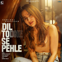 Dil Todne Se Pehle Mp3 Songs Download