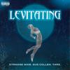 Strange Mike, Gus Collen & Tars - Levitating  arte