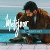 Metejoor - Ze Meent Het artwork