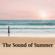 Barefoot Footsteps Sand, Light Run (Passi sulla sabbia a piedi nudi, corsa leggera) - Sound Effects Factory