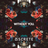 Discrete - Without You. (feat. Mary Cicilia) artwork
