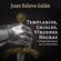 Templarios, griales, vírgenes negras y otros enigmas de la Historia - Juan Eslava Galán