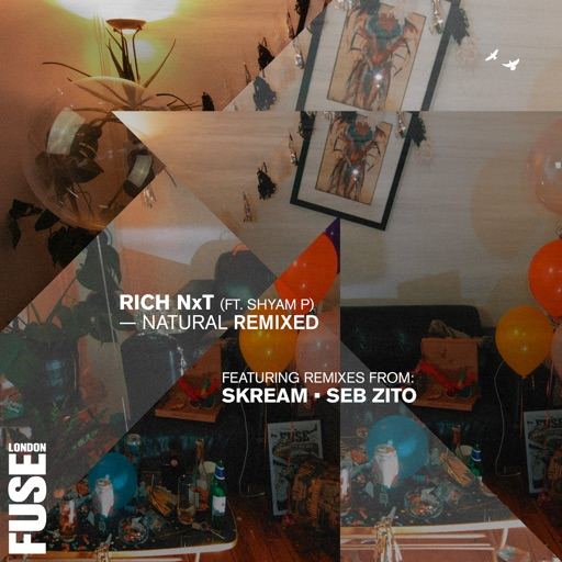 Natural Remixed - Single by Skream & Rich NxT & Shyam P