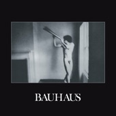 Bauhaus - Rosegarden Funeral of Sores