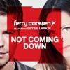 Icon Not Coming Down (feat. Betsie Larkin) - EP