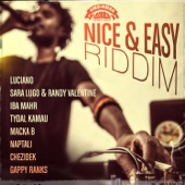 Luciano/Sara Lugo/Chezidek/Macka B/Gappy Ranks/Iba Mahr/Randy Valentine/Tydal Kamau/Naptali - Nice & Easy Riddim Medley