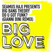 Do U Got Funk? (Gianni Bini Remix) [Seamus Haji Presents]