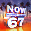 Various Artists - Now That's What I Call Music Vol. 67  artwork