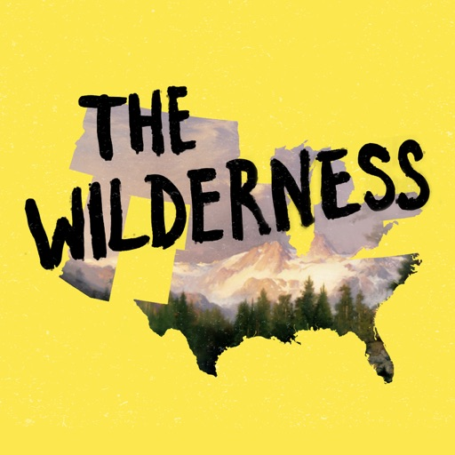 Cover image of The Wilderness