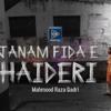 Mahmood Raza Qadri - Janam Fida-e-Haideri artwork