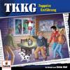 Folge 207: Doppelte Entführung - TKKG