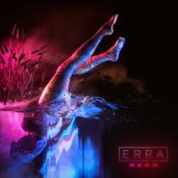 Erra - Disarray artwork