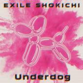 Underdog/EXILE SHOKICHIジャケット画像