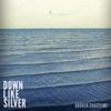 Broken Coastline - Down Like Silver mp3