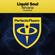 Download Lagu Liquid Soul - Nir... Mp3