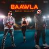 Baawla - Badshah mp3
