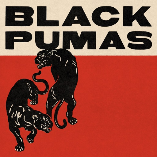 Art for Politicians In My Eyes by Black Pumas