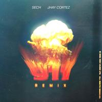 911 (Remix) - Sech