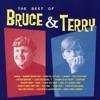 Bruce & Terry