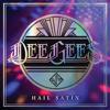 Foo Fighters - Dee Gees / Hail Satin - Foo Fighters / Live artwork