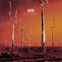 Origin of Symmetry (XX Anniversary RemiXX) - Muse - Muse