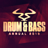 RAM Drum & Bass Annual 2019 - Various Artists