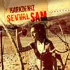 Şevval Sam - Hey Gidi Karadeniz artwork
