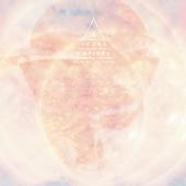 Young Empires - Enter Through the Sun