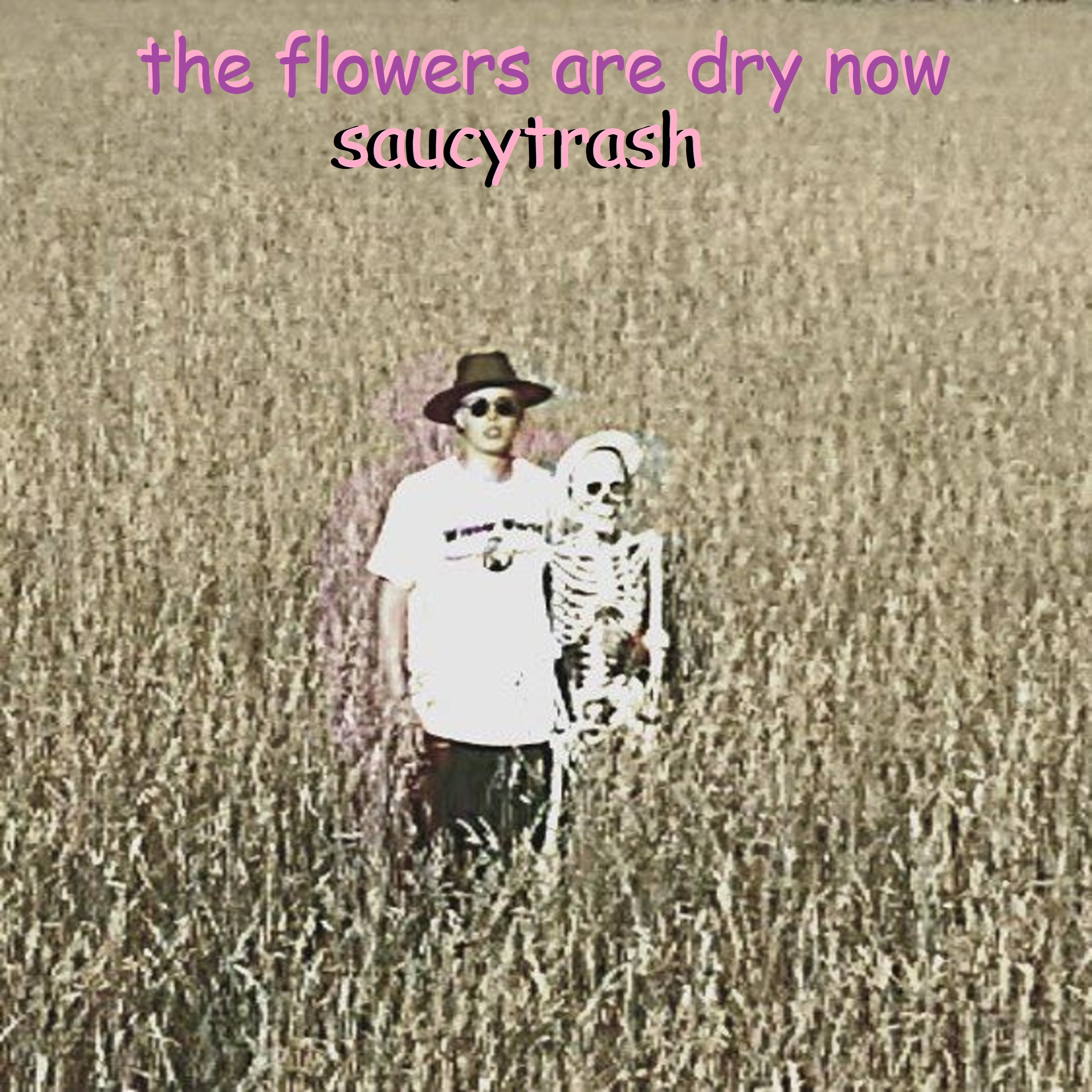 The Flowers Are Dry Now - Single