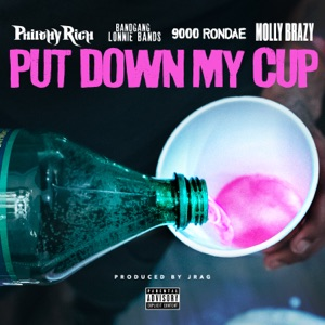 Put Down My Cup (feat. Bandgang Lonnie Bands, 9000 Rondae & Molly Brazy) - Single Mp3 Download