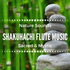 Shakuhachi Flute Music Sacred Mystic Meditative Flute Music with Nature Sounds for Mindfulness Relaxation Sleeping Troubles Yoga