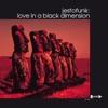 Love in a Black Dimension