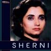 Sherni (Original Motion Picture Soundtrack)