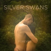 Silver Swans - Mother of Pearl