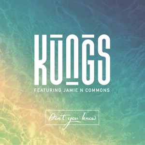 Don't You Know (DJ Licious Remix) [feat. Jamie N Commons] - Single Mp3 Download