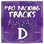 Pro Backing Tracks D, Vol.7