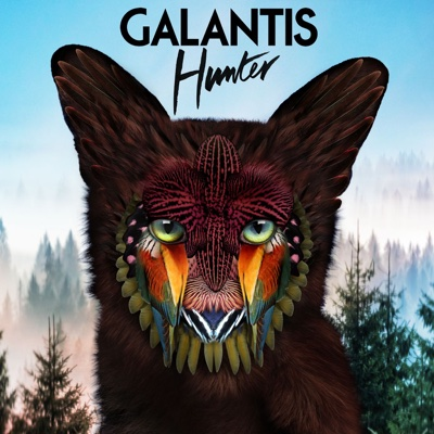 Hunter - Galantis song