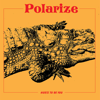 Polarize - Hurts to Be You artwork